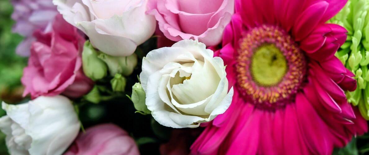Rodzaje I Znaczenie Kwiatow Rodzaje Kwiatow Cietych Twojakwiaciarnia24